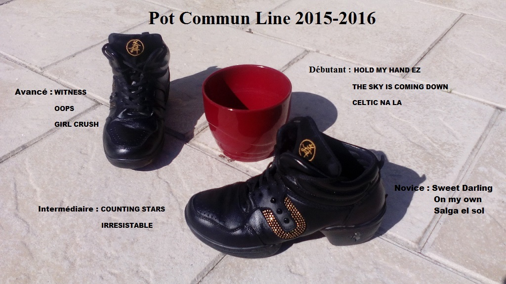 2015 2016 pot commun line